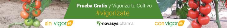 Novasys Pharma